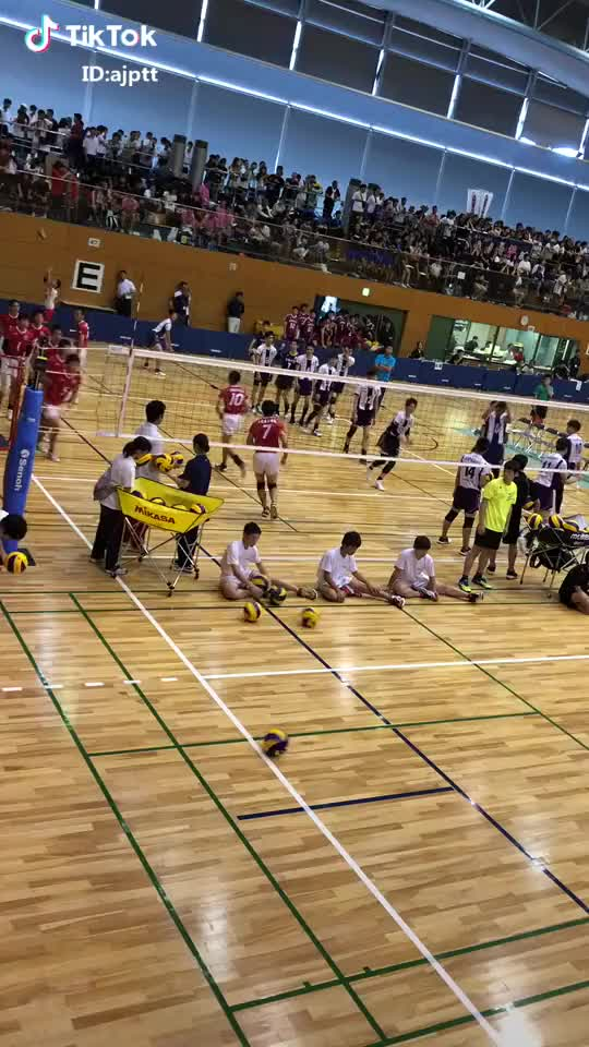 Watch Volleyball practice GIF on Gfycat. Discover more basketball GIFs on Gfycat