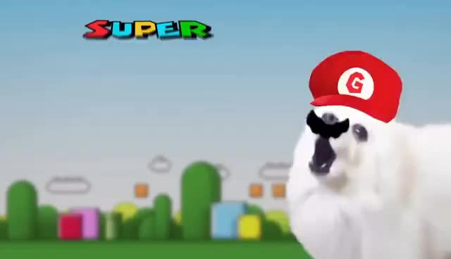 Watch and share Super Bork World GIFs on Gfycat
