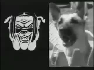 Watch and share WWE Road Dogg 1998-2000 Titantron - ''Oh You Didn't Know?'' GIFs on Gfycat