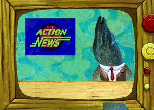 photoshopbattles, Bikini bottom news anchor GIFs