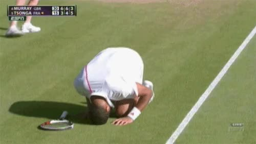Watch this tennis GIF on Gfycat. Discover more sports, tennis, tennis ball, tennis racket GIFs on Gfycat