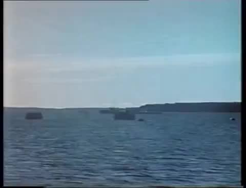 Watch Soviet nuclear torpedo test (1955) GIF on Gfycat. Discover more All Tags, archive, destruction, joe-17, military, nuclear, poligon, power, ship, torpedo, weapons GIFs on Gfycat