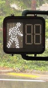 Watch and share 🚦 Vertical Traffic Light  🚥 Horizontal Traffic Light  🚷 No Pedestrians GIFs on Gfycat