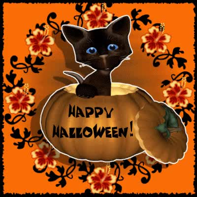 Watch and share 133723-Happy-Halloween-Cross-Eyed-Black-Cat GIFs by Mary Gardner on Gfycat