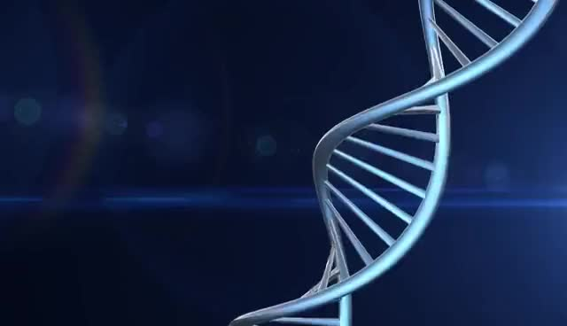 Watch and share DNA Background Loop GIFs on Gfycat