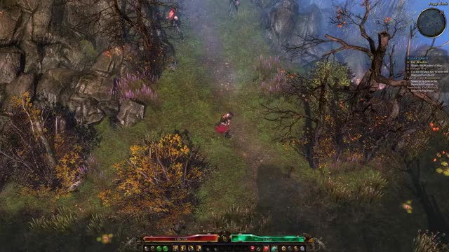 Watch and share Grim Dawn GIFs and Arpg GIFs by ScarsofRenown on Gfycat