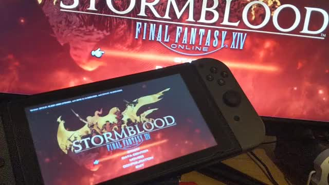 Watch and share FFXIV On Nintendo Switch (with Audio) GIFs by ipsumata on Gfycat