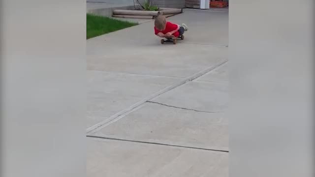 Watch and share Aww, His First Taste Of Concrete GIFs on Gfycat