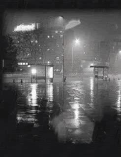 Watch and share Rain GIFs on Gfycat