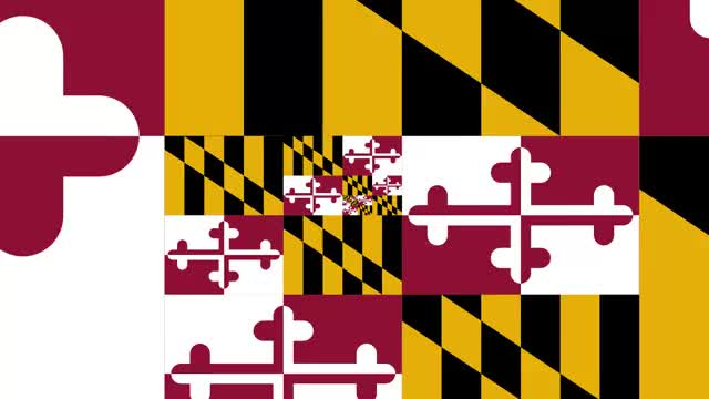 Watch and share MARYLAND GIFs on Gfycat