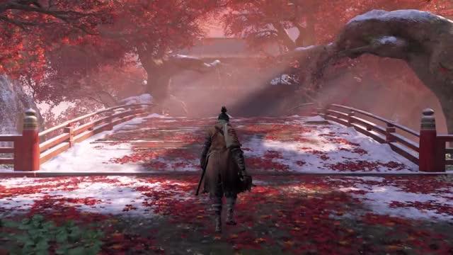 Watch and share Dark Souls Ii GIFs and Gamescom 2018 GIFs on Gfycat