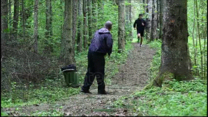 popular, youdontsurf, the woods GIFs