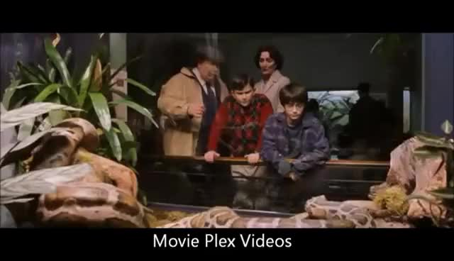 Watch and share Harry Potter At The Reptile House GIFs on Gfycat