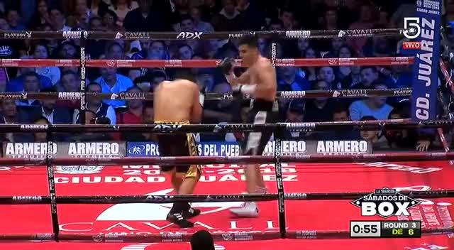 Watch delgado-mendoza RD3 GIF by @aaeohl on Gfycat. Discover more boxeo, boxing, lindolofo delgado, sports GIFs on Gfycat