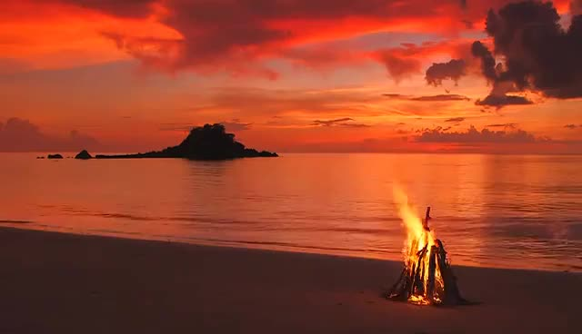 Watch and share Campfire By The Beach With The Sounds Of The Sea And Real Wood Fire   Trailer GIFs on Gfycat