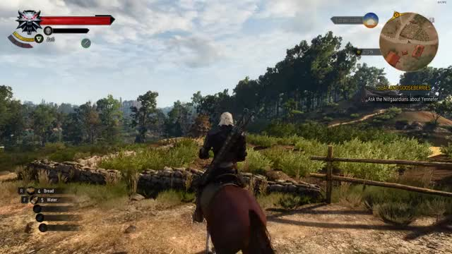 Watch and share Witcher3 GIFs by roozah on Gfycat