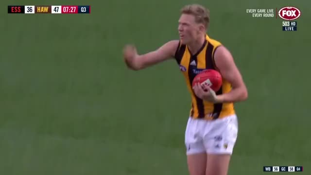 Watch and share Hawthorn 2018 GIFs and Hawthorn Afl GIFs on Gfycat
