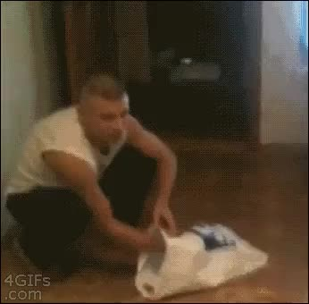 Watch catpranks gif GIF on Gfycat. Discover more related GIFs on Gfycat