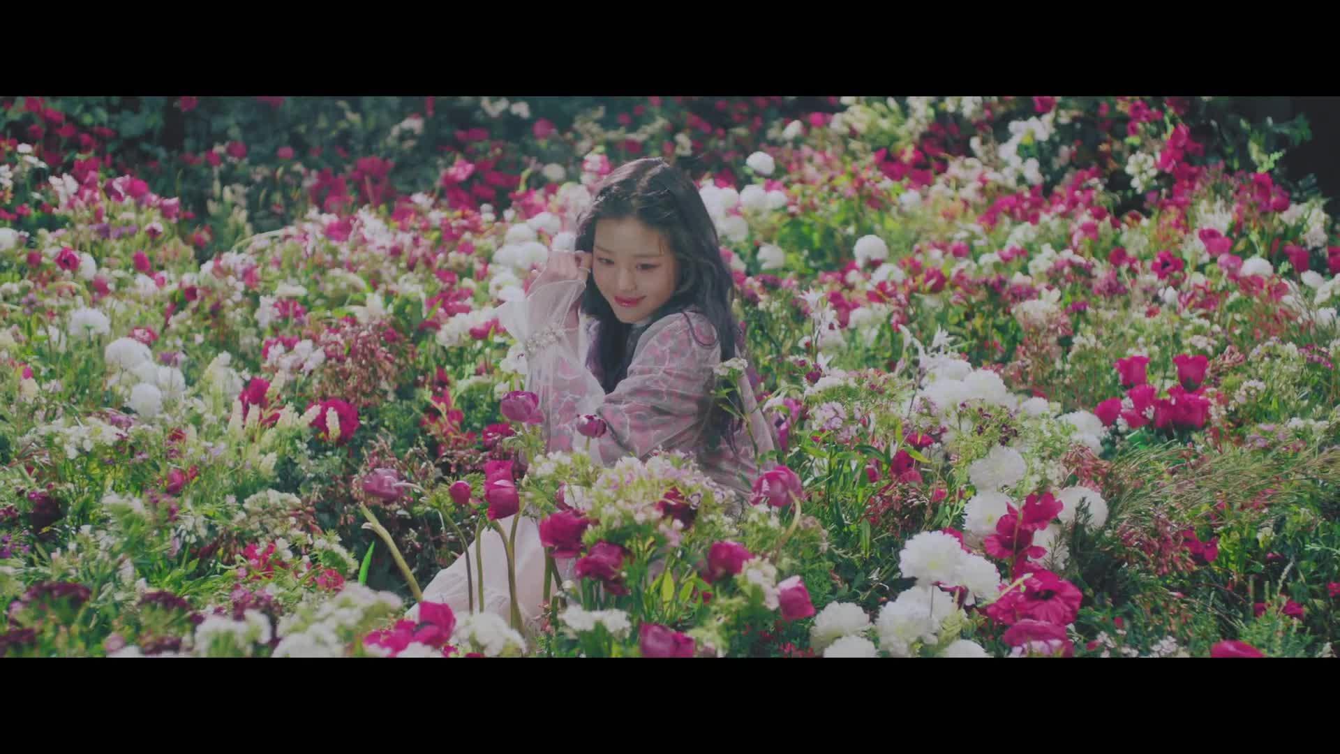 IZ*ONE, IZ*ONE MV, IZONE, Jang Wonyoung, K-CULTURE korean Music MV Music Video K-Pop Kpop 뮤비 뮤직비디오, Stone Music Entertainment, Violeta, Wonyoung, 비올레타, 비올레타 뮤비, 아이즈원, 아이즈원 뮤비, Jang Wonyoung - IZONE