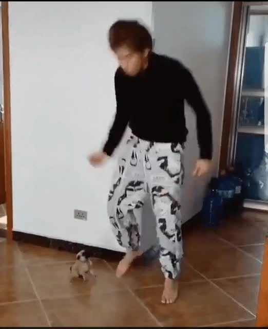 Watch and share To Cute GIFs by ForgetFel on Gfycat