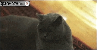 frown, sad, unhappy, Frown GIFs