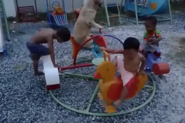 Watch and share C'mon Kid, I Don't Have All Day... Onward, My Trusty Steed! GIFs on Gfycat