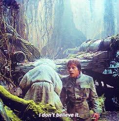 Watch and share Mygifs Star Wars Luke Skywalker Yoda GIFs on Gfycat
