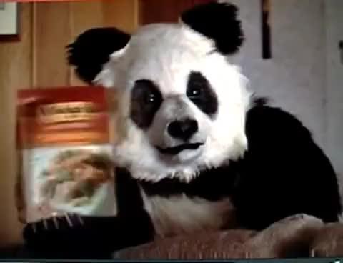 Watch panda GIF on Gfycat. Discover more panda GIFs on Gfycat