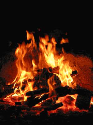 firewood logs scotland GIFs