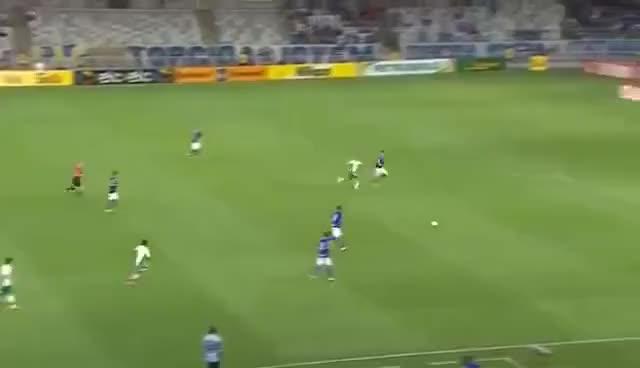 Watch and share Gol Épico De Gabriel Jesus Driblando Fabio Do Cruzeiro GIFs on Gfycat