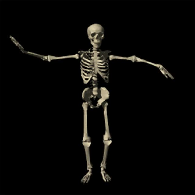 Watch and share MR BONES GIFs on Gfycat