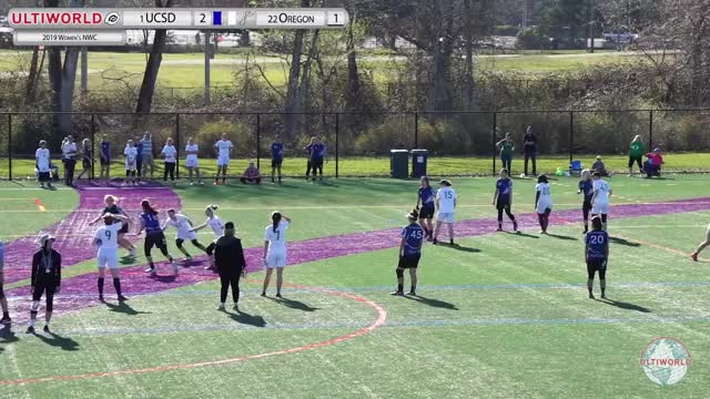 Watch and share Ultiworld GIFs and Cricket GIFs by scooberftw on Gfycat
