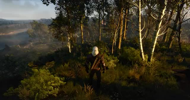 Watch and share The Witcher 3 Screenshot 2019.05.19 - 07.13.21.18 GIFs on Gfycat