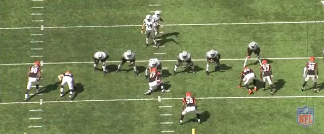 Watch and share Bengals GIFs by John Sheeran on Gfycat