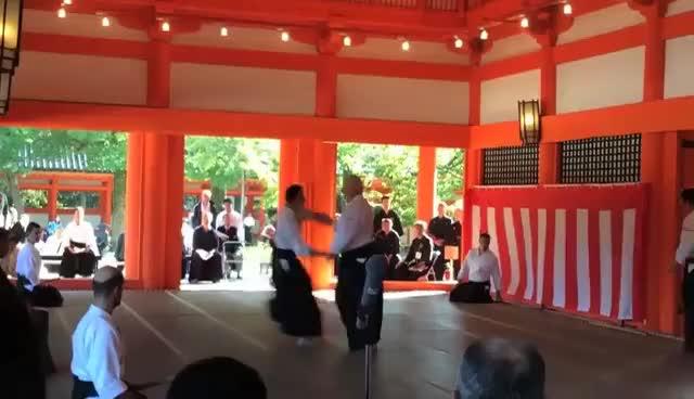 aikido, demokyoto2014 GIFs
