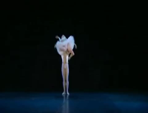 Watch ballet GIF on Gfycat. Discover more ballet, dança GIFs on Gfycat