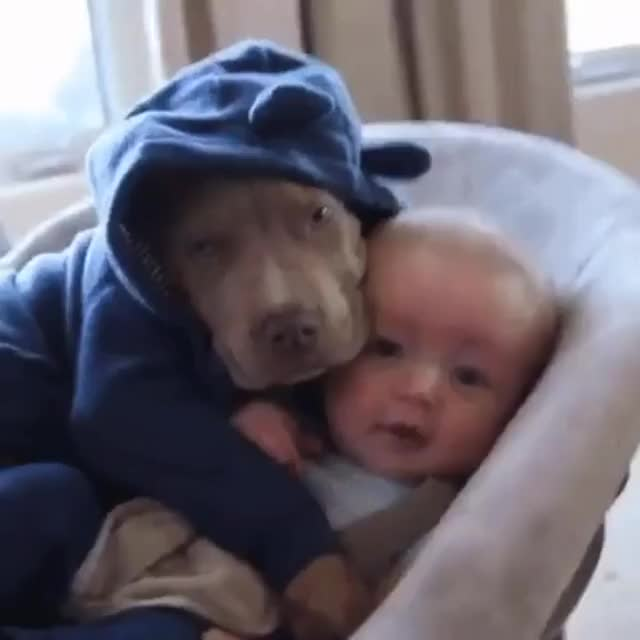 Watch and share Best Buds GIFs by likkaon on Gfycat