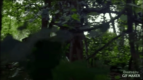 gifs, movies, theforest, Tanna GIFs