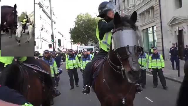 Watch What really happened at the DFLA march in london GIF on Gfycat. Discover more News & Politics, Reverend Simon Sideways, antifa, dfla, dfla march london, london police, police brutality GIFs on Gfycat
