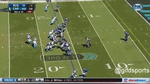 Watch and share Cam Newton  To Brandon LaFell TD GIF GIFs on Gfycat