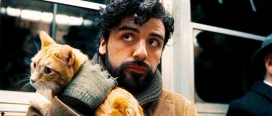 Watch this oscar isaac GIF on Gfycat. Discover more oscar isaac GIFs on Gfycat