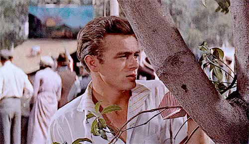 Watch Dazed And Confused GIF on Gfycat. Discover more *, 1955, 50s, East Of Eden, James Dean, eastofeden*, my gif, so nice GIFs on Gfycat