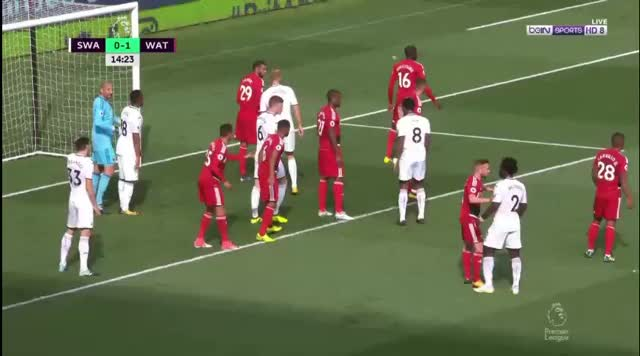 Watch and share Swansea GIFs by reids1 on Gfycat