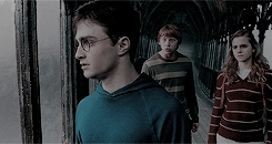 *gifs, *movie, 1k, Harry Potter Saga, emmawathson, hp gifs, hpedit, narcissabllack, livin la dolce vita GIFs