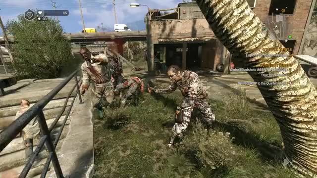Watch and share Dying Light GIFs and Dyinglight GIFs by queckquack on Gfycat