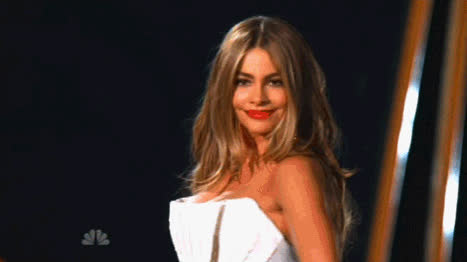 Sofia Vergara on the red carpet is what dreams are made of. GIFs