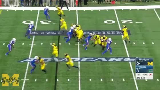 Watch Speight Dive GIF by mgoblog on Gfycat. Discover more 2017, Florida, Football, Michigan, Wilton Speight GIFs on Gfycat