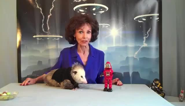 Watch La lala lala lala! GIF on Gfycat. Discover more aliens, opossum GIFs on Gfycat