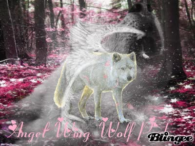 Watch and share Angel Wing Wolf Pack GIFs on Gfycat
