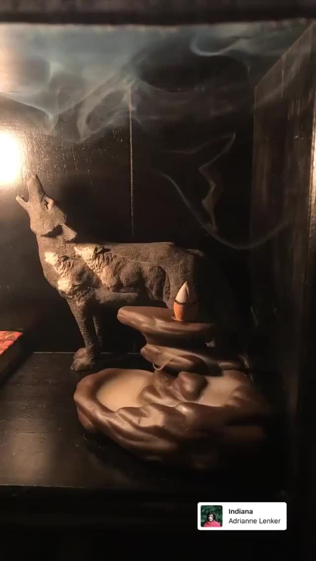Watch and share Meishamock 2018-12-22 18:02:29.857 GIFs by Pams Fruit Jam on Gfycat